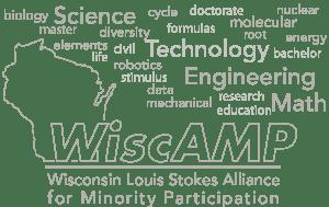 wiscamp-logo-wordcloud